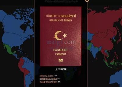 外国买房网,土耳其移民首例护照成功获批!