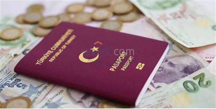 土耳其護照優勢無可比擬,進可去英美,退可留歐洲!